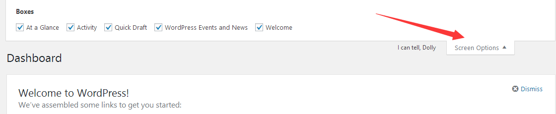 wordpress显示选项